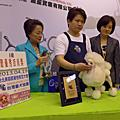 102/4/19KCT寵物美容師檢定