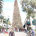 2008 LA 聖誕節前夕
