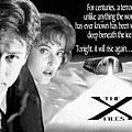 X檔案(X-Files)