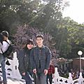2009淡水櫻花季
