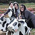 20090208青林農場