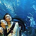 20090214屏東海生館
