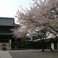 06年日本遊學