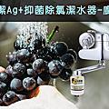 銀立潔 抑菌除氯潔水器 (廚房用)