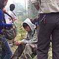 forest_bio3