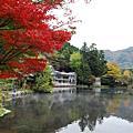 2008日本北九州(湯布院)