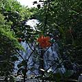 2008 Pohnpei