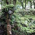 2008.8.3陽明山