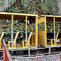 2010.11.28-宜蘭太平山