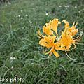 2008.10.12獅頭山公園