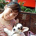 我的寶貝*Sunny【和小小馬麻回家的第8天】