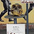 台南市後壁區-日光石頭博物館(20180707)