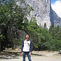 加州-優勝美地國家公園與赫氏古堡