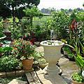 綠地表鄉村花園