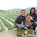 20120219-[苗栗] 大湖採草莓&大湖酒莊