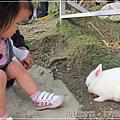 20120331-[台北] 八里-to house,兔子餐廳