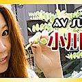 2010/1主打女優 小川あさ美