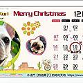2014 毛寶寶桌曆