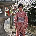 2008 花見之旅@日本関西