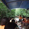 1007 馬來西亞‧沙巴-恐龍灣紅樹林