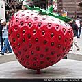【苗栗】大湖採草莓