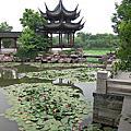 杭州自由行-西溪濕地(高庄)