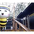 蜜蜂故事六號館