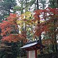 二荒山神社201311