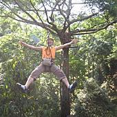 我的旅遊相簿_泰國_長臂猿飛翔 Flight a gibbon 相簿封面