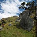 我的旅遊相簿--紐西蘭天體初體驗