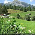 瑞士義語區山上的夏秋冬