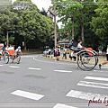 2013夏 奈良餵鹿驚魂記