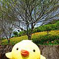 20120818-20@Hualien