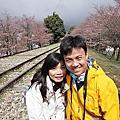 2012.04.06 日本關西賞櫻行 Day7