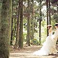婚紗拍攝景點:陽明山黑森林