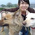 Animals Taiwan志工