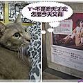 2012嗑鞋朵拉  D+AF 冬換季出清特賣會(五) 下集 2012.03.25