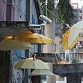 2011.11.05南港瓶蓋廠