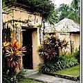 090221-0225 峇里島五日遊