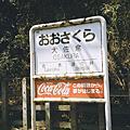 日本的彩虹七