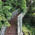 2.林梢步道