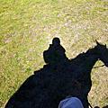 WANAKA騎馬