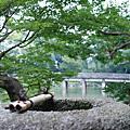 200707京都大阪7日遊