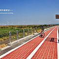 南埔鷺鷥林:台中市濱海自行車道大安段~~