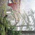 2007(冬)太平山之旅