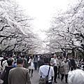 東京上野公園