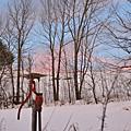 Vermont Christmas 2009