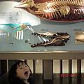 台博館恐龍展