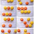 豆荳夾 發展里程圖