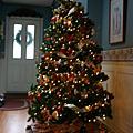 2007 Canada(Dec.28-29剛到的照片)